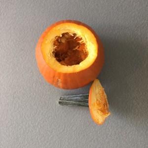 DIYBride_PumpkinCenterPieceStep1.2